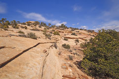 Red Rock Ridge in the Southwest Royalty Free Stock Photography