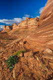 Red Rock Sandstone Formations near Page AZ Stock Photo