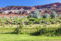 Red Rock Sandstone Mountains Green Grass Torrey Utah Stock Images