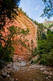 Red rock walls of Zion Canyon, taken during The Narrows hike at Royalty Free Stock Photography