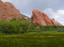 Red Rocks in Bloom Royalty Free Stock Photos