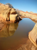 Red rocks and canyon in desert. Valley of Fire in Nevada. The rock is red among desert landscape. A watering hole is shown in winter Stock Image