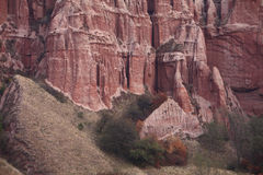 Red rocks in canyon in the fall Stock Images