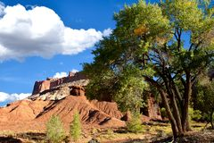Red Rocks Capitol Reef National Park royalty free stock photos