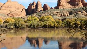Red rocks on Colorado River stock video footage