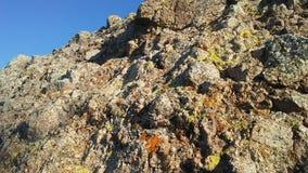 Red Rocks in Desert in Phoenix, Arizona in Spring. Stock Images