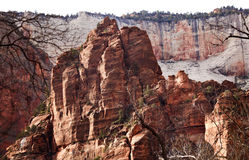 Red Rocks Great White Throne Zion Canyon Utah Royalty Free Stock Photos