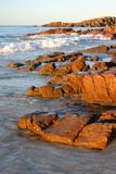 Red rocks. Late afternoon sun brings out the colour of these seaside rocks Royalty Free Stock Images