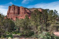 The Red Rocks. Majestic view of red rock formations thought to hold spiritual power in Sedona Arizona Royalty Free Stock Image