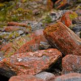 Red rocks. On mountain trail Royalty Free Stock Image