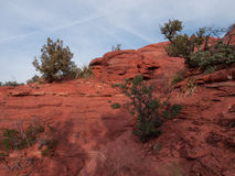 Red Rocks near Sedona Arizona Royalty Free Stock Images