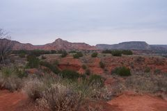 Desert of New Mexico. The red rocks of New Mexico give way to cactus and yucca and sagebrush stock photo