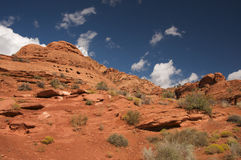 Red Rocks Of Utah Stock Photography