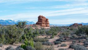 Arches National Park, Rocks Red Desert Mountain Landscape. Red Rocks and Pine Trees at Arches National Park, Moab, Utah, Landscape with Blue Sky stock photos
