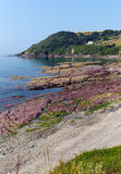 Red rocks Talland Bay beach between Looe and Polperro Cornwall England UK Stock Photo