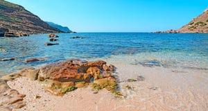 Red rocks in the water. Wet rocks in Porticciolo shore, Sardinia Stock Photo