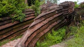 Red rocks of Zhangjiajie Royalty Free Stock Image