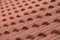 Free Red Roof Royalty Free Stock Photography - 5637317