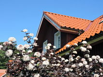 Red roof and flowers, Lithuania Royalty Free Stock Photography