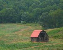 Red Roof-Schuur Royalty-vrije Stock Afbeelding