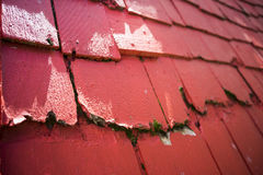 Red roof shingles Royalty Free Stock Image