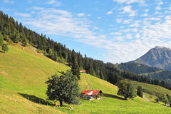 Red roof of a Swiss chalet. Swiss Alps. Red roof of a Swiss chalet on a steep hillside Royalty Free Stock Image