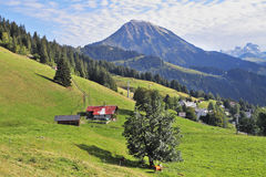 Red roof of a Swiss chalet on a hillside Stock Images