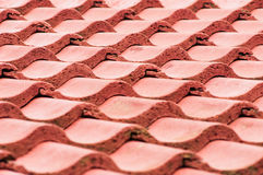 Red Roof Tiles Closeup. House tile roof that is red in color Royalty Free Stock Image