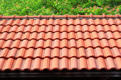 Red roof with tree