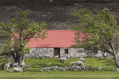 Red roofed bothy in Glen Mhor. Stock Image