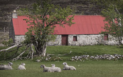 Red roofed bothy in Glen Mhor. Royalty Free Stock Image