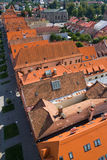 Red roofs in bardejov stock photo