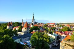 Red roofs and church of old Tallinn Royalty Free Stock Photo