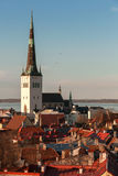 Red roofs and church St. Olaf in old Tallinn Stock Photography