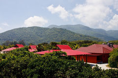 Red Roofs in Jungle Under Bright Sky Royalty Free Stock Photos