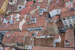Red roofs of old houses Florence seen from the observation platform Duomo, Cathedral Santa Maria del Fiore. Royalty Free Stock Photos