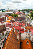 Red roofs of old town Tallinn, Estonia Royalty Free Stock Images