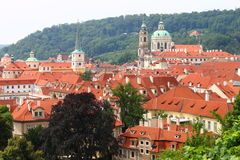 Red roofs of Prague royalty free stock image