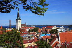 Red roofs of tallinn. The view of the old town of medieval tallinn with beautiful churches and red roofs and the sea Royalty Free Stock Images