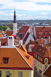 Red roofs in Tallinn Old Town . Stock Image