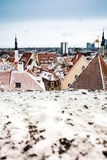 Red roofs of Tallinn Stock Photography