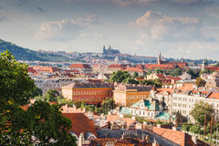 Red rooftops of Prague Stock Photos