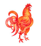 The red rooster. Fiery rooster - a symbol of new 2017 on the Chinese horoscope. Watercolor  painting Royalty Free Stock Photo