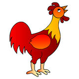 Red rooster vector illustration. Red rooster isolated on white Royalty Free Stock Photo