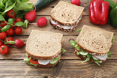 Red roots sandwiches. Red roots and tomatoes sandwiches Royalty Free Stock Photo