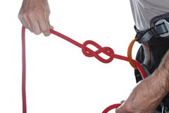 Red rope on climbing harness Stock Images