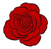 Red rose royalty free illustration