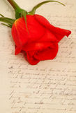 Red rose. In a valentine vintage theme Royalty Free Stock Photography