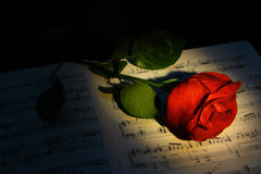 Red rose. With dramatic lighting over note-sheet Royalty Free Stock Images