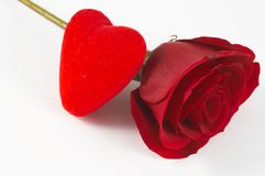 Red rose. And heart shape on white royalty free stock images